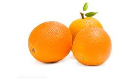 Sluit omhoog van drie sinaasappelen Stock Fotografie