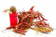 Sluit omhoog van droge rode Spaanse pepers met zijn gehaalde olie in een transparante die fles op wit met Spaanse pepervlokken wo stock fotografie