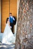 Sluit omhoog van een boomstam en een jong huwelijkspaar op de achtergrond stock afbeelding