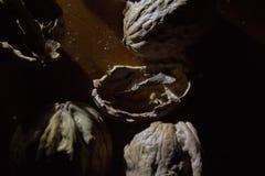 Sluit omhoog van een bos van okkernoten en lege shells op een houten die lijst door enige lichtbron wordt verlicht stock afbeeldingen