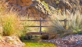 sluit omhoog van een houten brug op een rivierovervloed van kruiden en stormlopen in het zonnige licht van de zonsopgang De brug  royalty-vrije stock fotografie