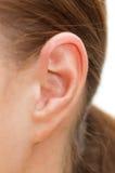 Sluit omhoog van een menselijk oor Royalty-vrije Stock Afbeelding
