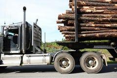 Sluit omhoog van een registrerenvrachtwagen die een volledige lading van logboeken dragen royalty-vrije stock afbeeldingen