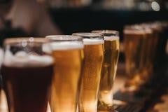 Sluit omhoog van een rek van verschillende soorten bieren, donker aan licht, op een lijst royalty-vrije stock fotografie