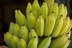 Sluit omhoog van een Rijpe Bos van Kleurrijke Bananen Stock Afbeeldingen