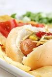 Sluit omhoog van een smakelijke hotdog Royalty-vrije Stock Afbeelding