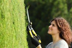 Sluit omhoog van een tuinmanvrouw die een cipres snoeien Stock Foto's