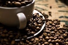 Sluit omhoog van een wit hoogtepunt van de koffiekop van koffiebonen, omringde Royalty-vrije Stock Foto