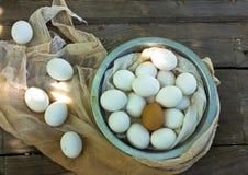 Sluit omhoog van eieren in een boog Stock Foto's