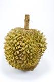 Sluit omhoog van gepelde durian geïsoleerd op witte achtergrond Royalty-vrije Stock Foto