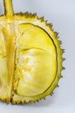 Sluit omhoog van gepelde durian op witte achtergrond Stock Afbeelding