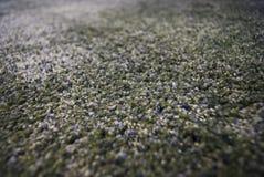 Sluit omhoog van grijs tapijt Stock Foto's