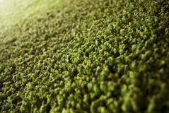 Sluit omhoog van groen tapijt Stock Foto's