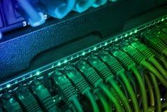 Sluit omhoog van groene die netwerkkabels met schakelaar worden verbonden die in dark gloeien Stock Foto