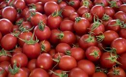 Sluit omhoog van groep verse rode tomaten bij een landbouwersmarkt stock afbeeldingen