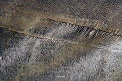 Sluit omhoog van grunge uitstekende geweven abstracte grijze achtergrond 5 Stock Afbeelding