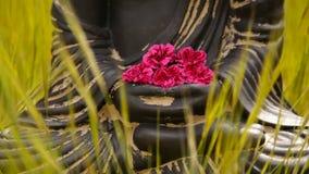 Sluit omhoog van het beeldje van Boedha met rode bloemen in het midden van groene weide stock footage