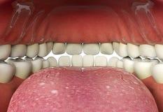 Sluit omhoog van het menselijke concept van de mond binnen, mondelinge gezondheid Stock Foto's