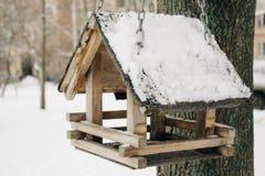 Sluit omhoog van houten vogelsvoeder op boomtak in het park stock afbeelding