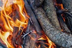 Sluit omhoog van Kampvuurvlammen die Logboeken branden royalty-vrije stock foto's
