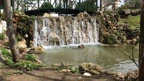 Sluit omhoog van kleine waterval en groene installaties in aard Kleine waterval in het park op een zonnige dag in Antalya, Turkij stock footage