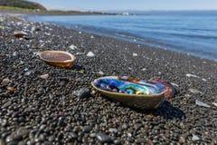 Sluit omhoog van kleurrijke overzeese shells op een strand stock foto's