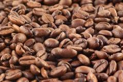 Sluit omhoog van koffiebonen Stock Foto