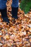 Sluit omhoog van laarzen die zich in gevallen bladeren bevinden Royalty-vrije Stock Afbeeldingen