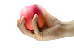 Sluit omhoog van Mannelijke Handholding Rood Apple Royalty-vrije Stock Afbeelding