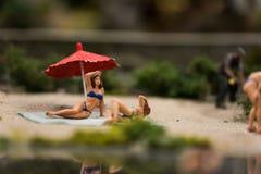 Sluit omhoog van Miniatuurwereld Stock Fotografie