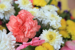 Sluit omhoog van mooie roze anjer in bloemenboeket Stock Foto's