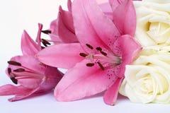 Sluit omhoog van Mooie roze lelies met bruine nectar en witte rosesdecoration op een witte achtergrond Royalty-vrije Stock Afbeelding
