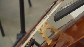 Sluit omhoog van musicus het spelen bij cello stock video