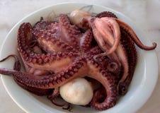 Sluit omhoog van octopus, natuurlijke zeevruchten, natuurvoeding Royalty-vrije Stock Foto