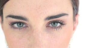 Sluit omhoog van ogen met oogschaduw stock video