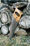 Sluit omhoog van oude handsaw die op een stapel van houten timmerhout in een bos rusten royalty-vrije stock foto's