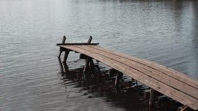 Sluit omhoog van oude, houten dok of pier in meer stock afbeelding