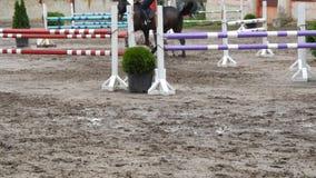 Sluit omhoog van paardvoeten Paardlooppas op het zand en sprongen door een barrière stock videobeelden