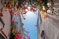 Sluit omhoog van Puerto DE Mogan traditioneel Spaans dorp in het eiland van Gran Canaria met bloemen die tijdens de lente en zon  stock afbeelding