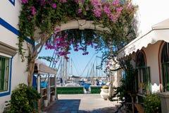 Sluit omhoog van Puerto DE Mogan traditioneel Spaans dorp in het eiland van Gran Canaria met bloemen die tijdens de lente en zon  royalty-vrije stock fotografie