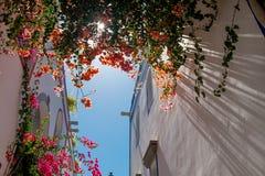 Sluit omhoog van Puerto DE Mogan traditioneel Spaans dorp in het eiland van Gran Canaria met bloemen die tijdens de lente en zon  royalty-vrije stock afbeeldingen