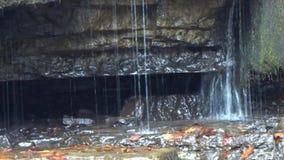 Sluit omhoog van randen van harde rots verhinderend een duikpool op van het de Watervallenkamp van de Brijvork het Park van de de stock videobeelden