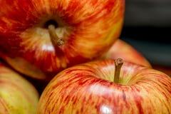 Sluit omhoog van rode appelen Stock Fotografie