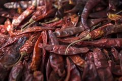 Sluit omhoog van roodgloeiende peper Ddy Stock Foto