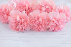 Sluit omhoog van roze anjerbloemen Stock Foto's
