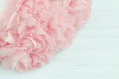 Sluit omhoog van roze anjerbloemen Royalty-vrije Stock Foto's