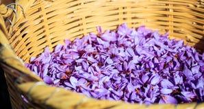 Sluit omhoog van saffraanbloemen in een rieten mand Stock Afbeeldingen