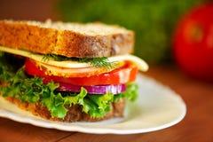 Sluit omhoog van sandwich Stock Foto's
