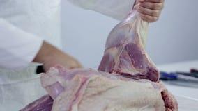 Sluit omhoog van slager die groot stuk van het vlees van Turkije snijden stock video