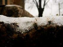 Sluit omhoog van sneeuw royalty-vrije stock fotografie